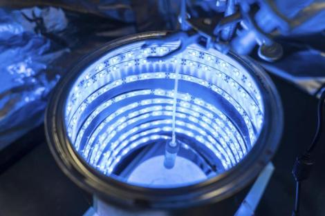Scientist invents way to trigger artificial photosynthesis to cleanair