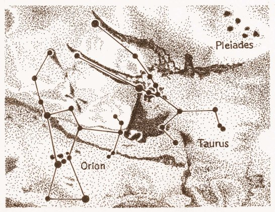 Image result for lascaux caves taurus
