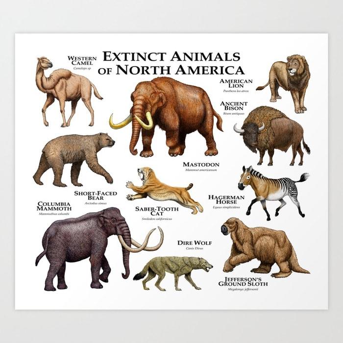 giant animals north america - 700×700