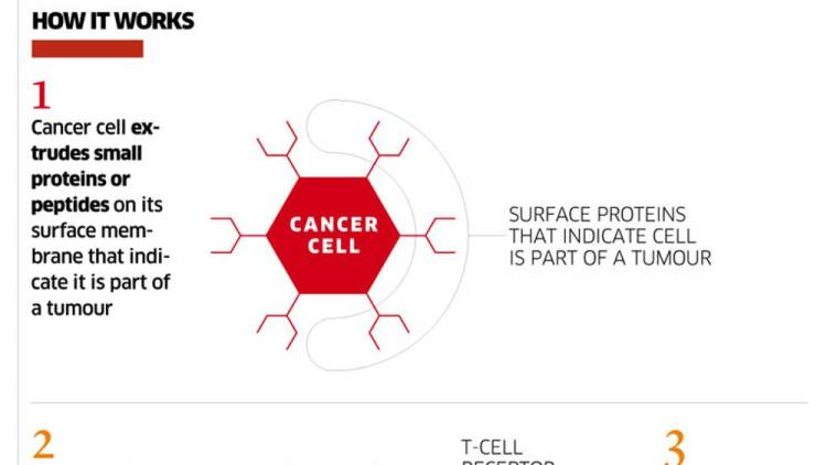 Cure For Cancer? Israeli Scientists Say This Year | END TIMES PROPHECY