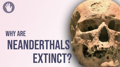 A Pole Shift Wiped Out Neanderthals – Are WeNext?